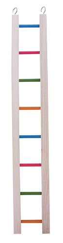 Happy pet ladder hout gekleurd
