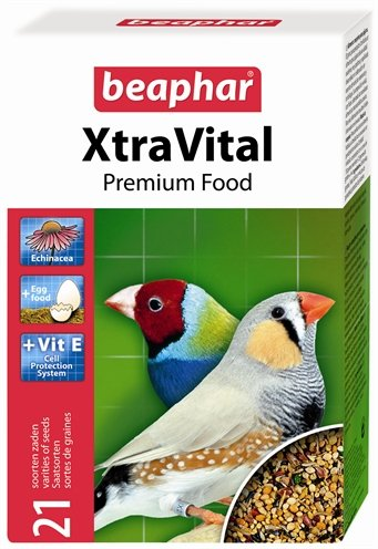Xtravital tropische vogel