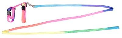 Karlie konijnentuig met lijn regenboog