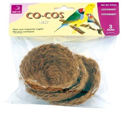 Esve kokos nestje