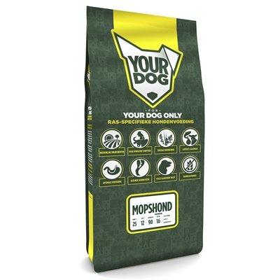 Yourdog mopshond senior