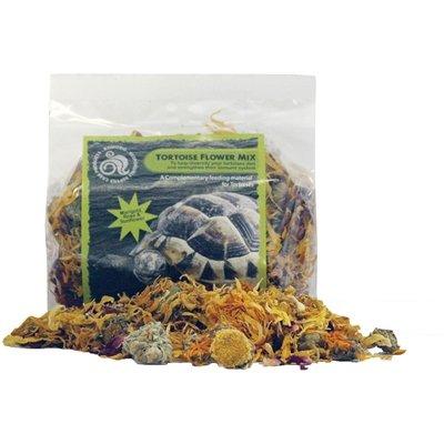 Komodo landschildpad bloemenmix