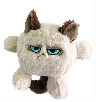 Grumpy cat kattenkop