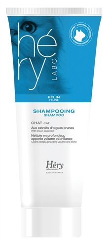 Hery shampoo kat