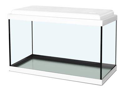 Zolux aquarium nanolife kidz wit