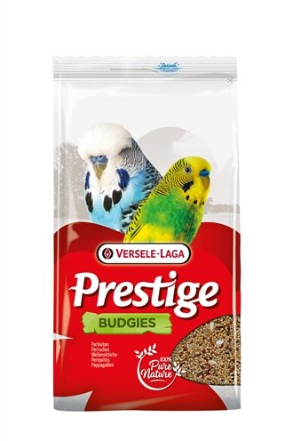Prestige grasparkiet