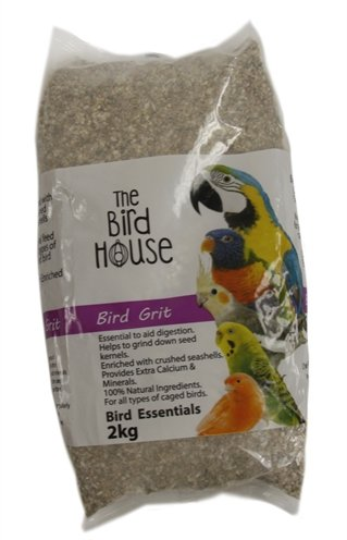 Happy pet bird grit