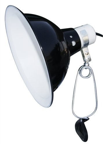 Komodo black dome clamp lamp fixture