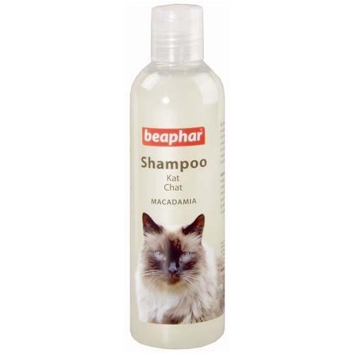 shampoo kat